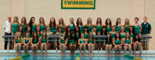 Lane Tech swimming